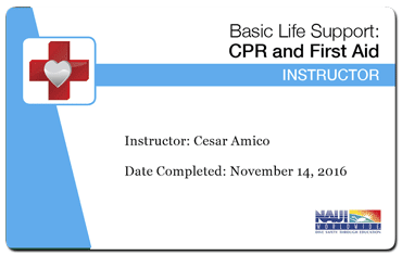 cesar amico naui basic life support instructor