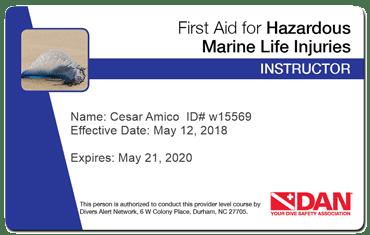 cesar amico - dan first hazardous marine fife injuries instructor