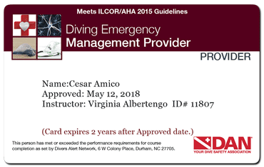 diving emergency management provider