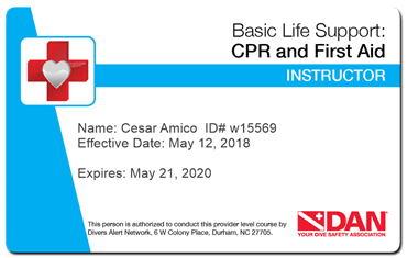 dan basic life support instructor