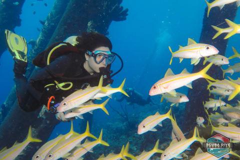 Bucear en Bonaire