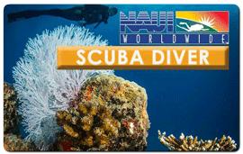 Scuba Diver NAUI