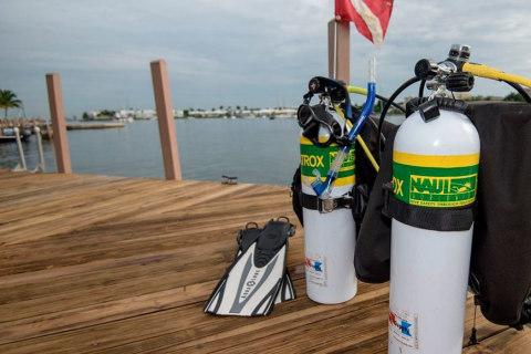 Nitrox Diver NAUI