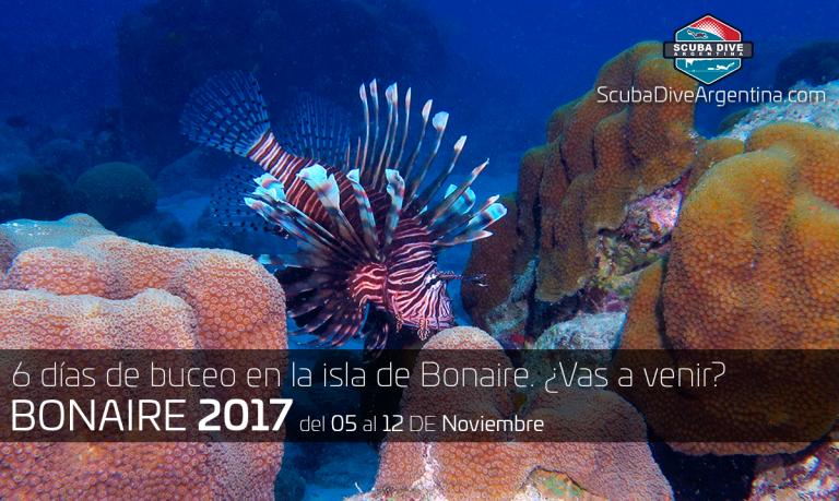Buceo en Bonaire