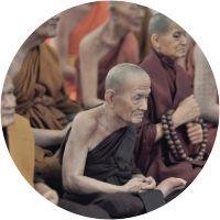 Buddhist's monk