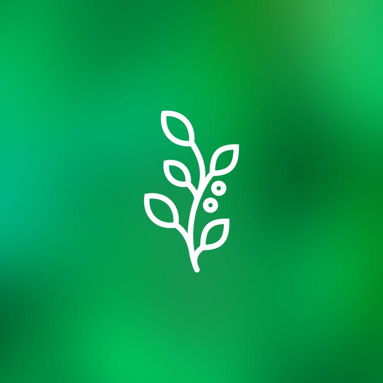 latrobe-grow_sdqohg