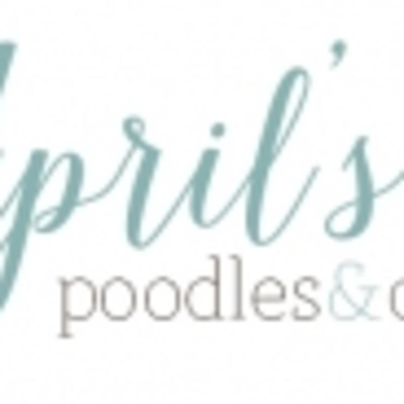 April's Poodles & Doodles