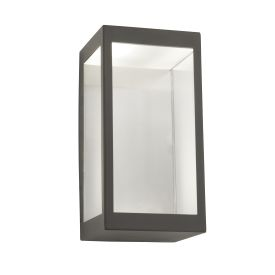 Outdoor Led Wall Light, Dark Grey/clear
