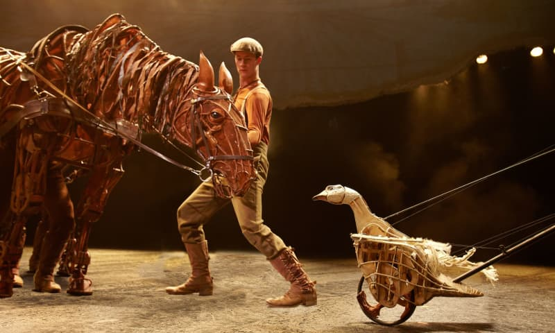 Artwork for War Horse