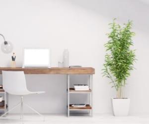 Le choix de statut lorsque l'on souhaite s'établir en freelance n'est pas négligeable.
