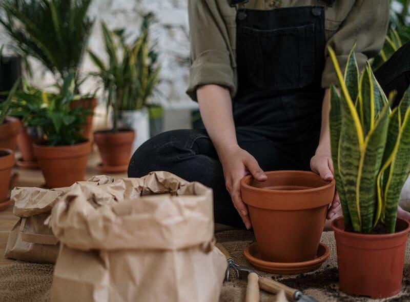 Les étapes indispensables pour devenir jardinier paysagiste indépendant !