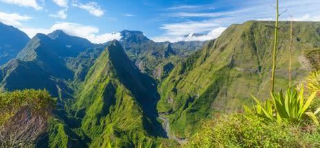 La domiciliation d'entreprise à la Réunion.