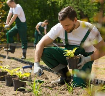 Plusieurs statuts juridiques permettent d'accéder à la profession de jardinier paysagiste freelance