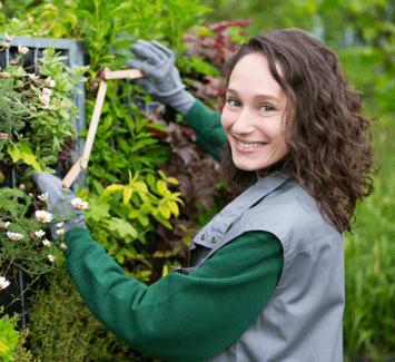 Les étapes essentielles pour devenir jardinier indépendant