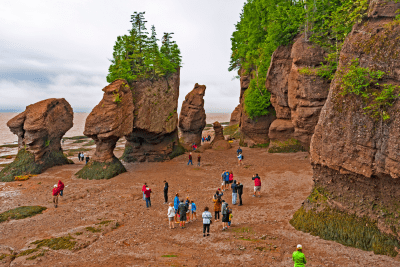 Hopewell Rocks Main