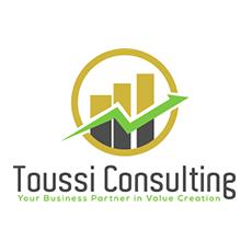 toussi_consulting