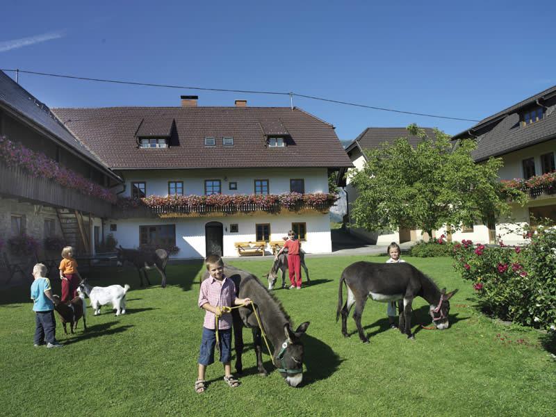 Bauernhof Perhinig