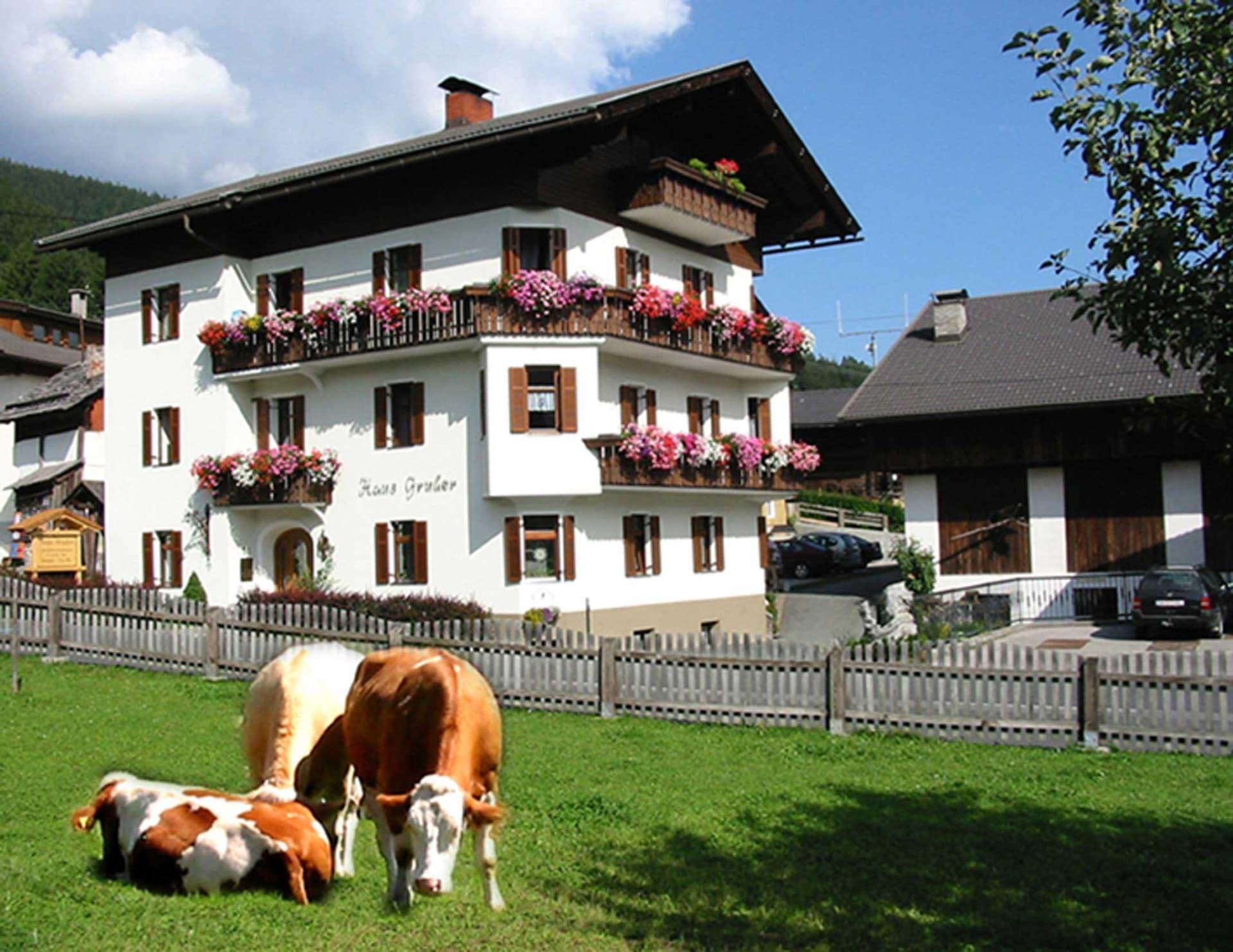 Erlebenswert - Bauernhof Gruber