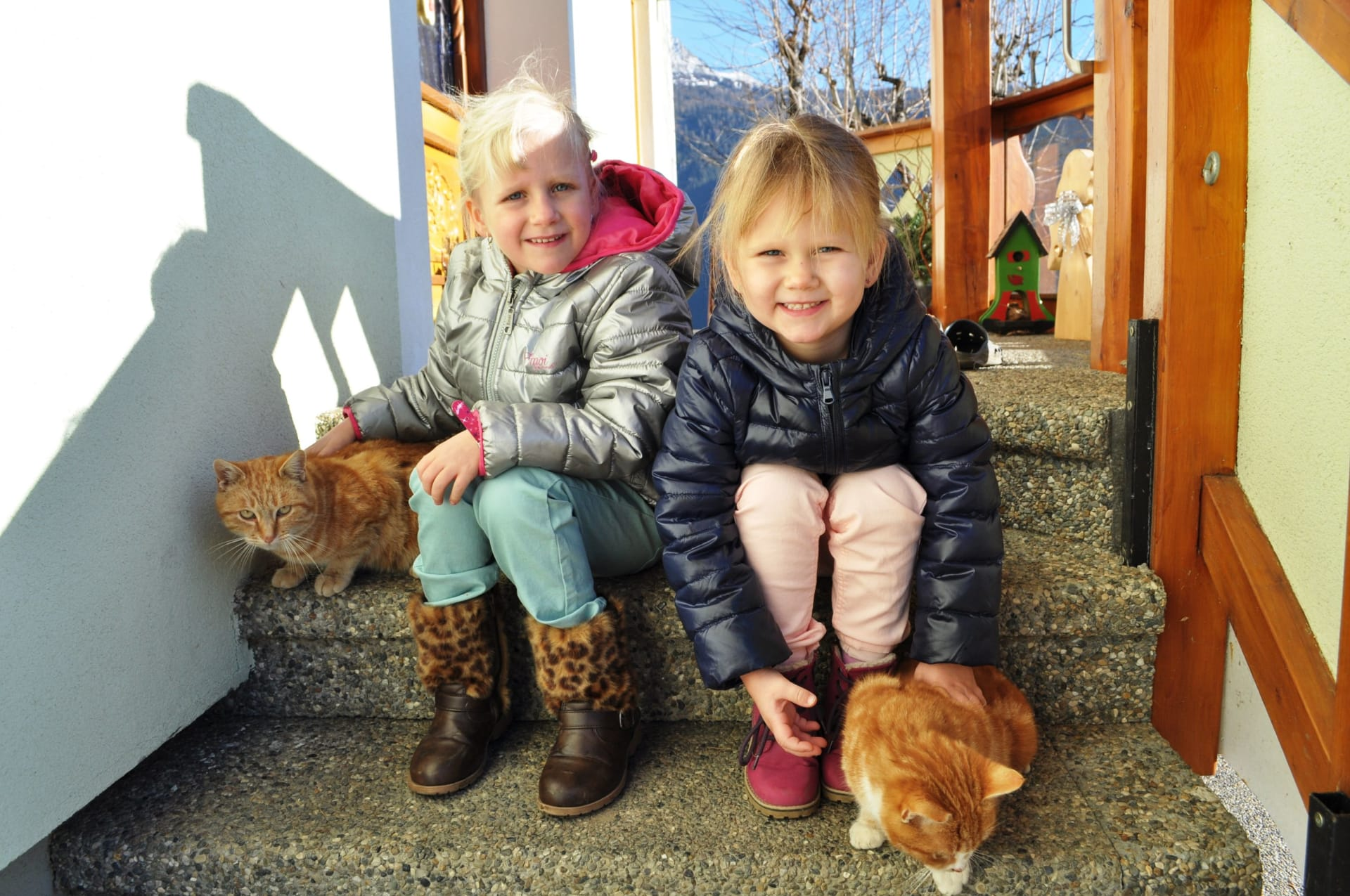 Die Katzen fühlen sich bei unseren kleinsten Gästen am wohlsten.