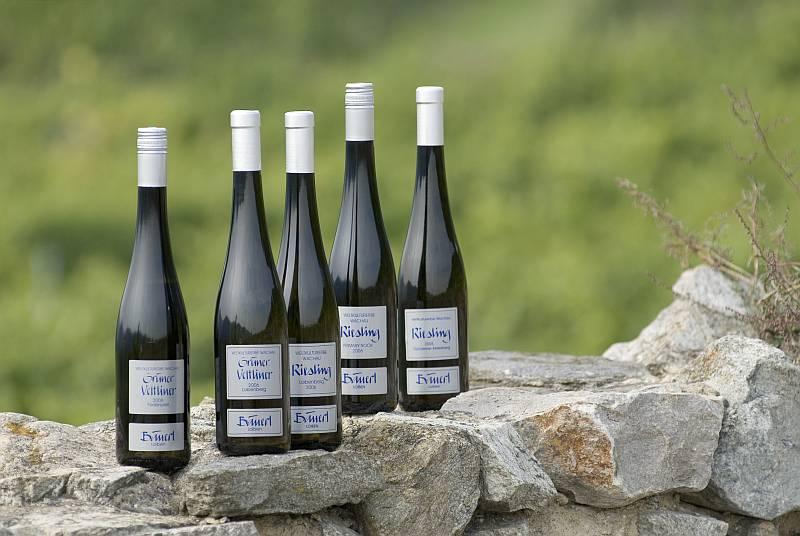 Unsere Weinflaschen