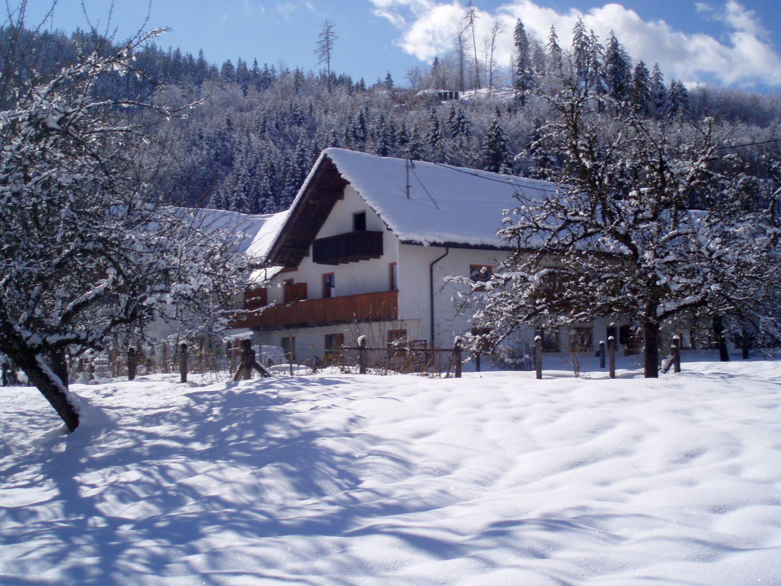 Steinwänd im Winter