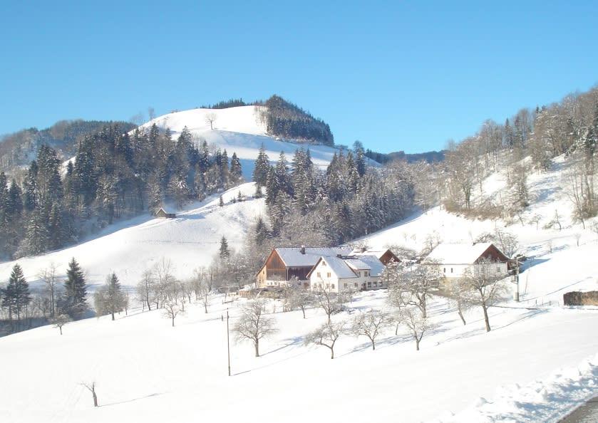 Hofansicht im Winter