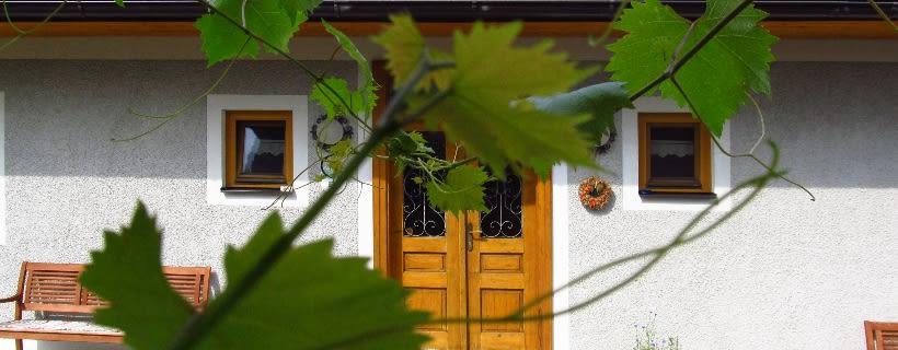 Weingut Dietl - Eschenhof