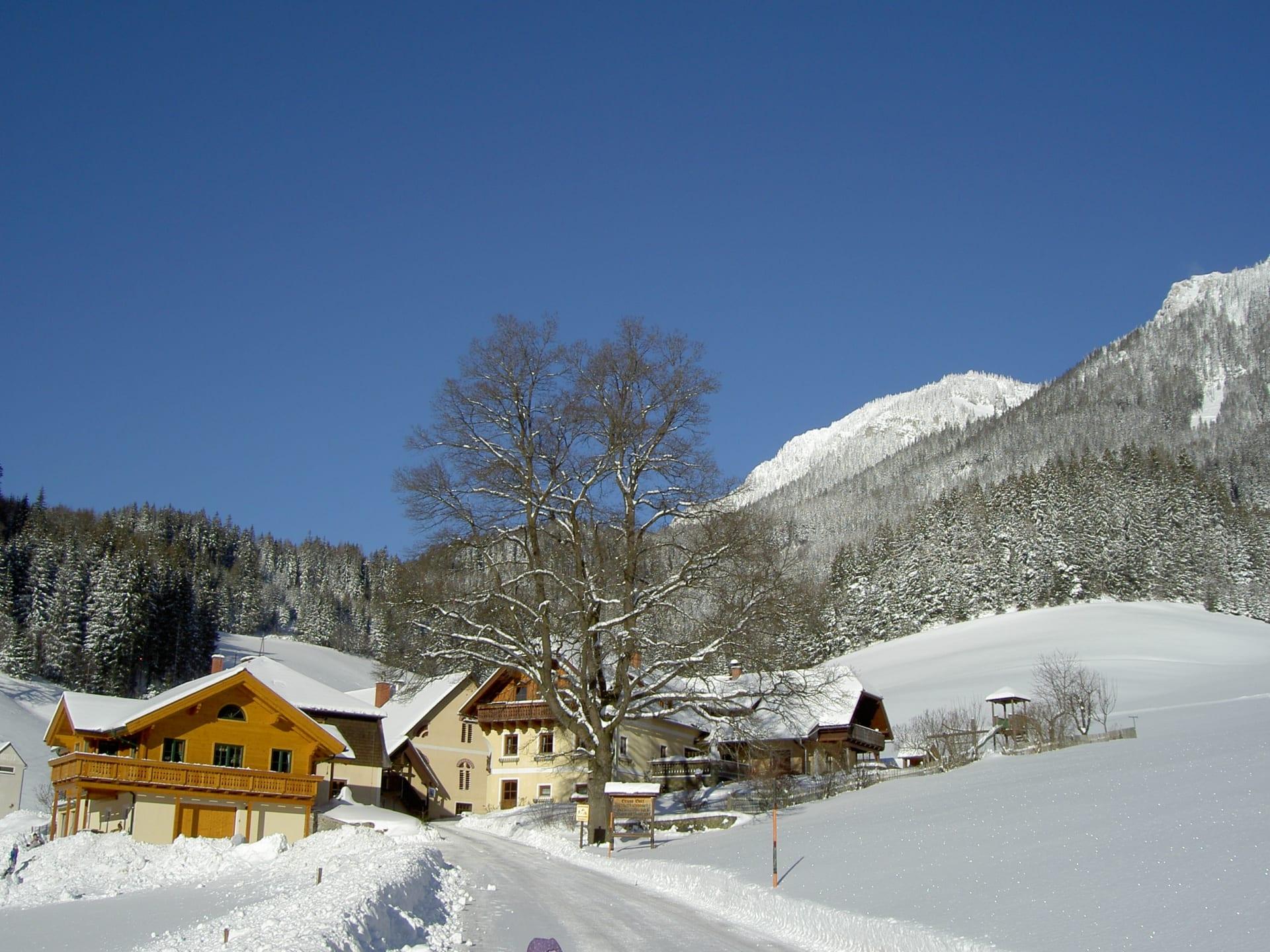 Winter am Michlbauerhof