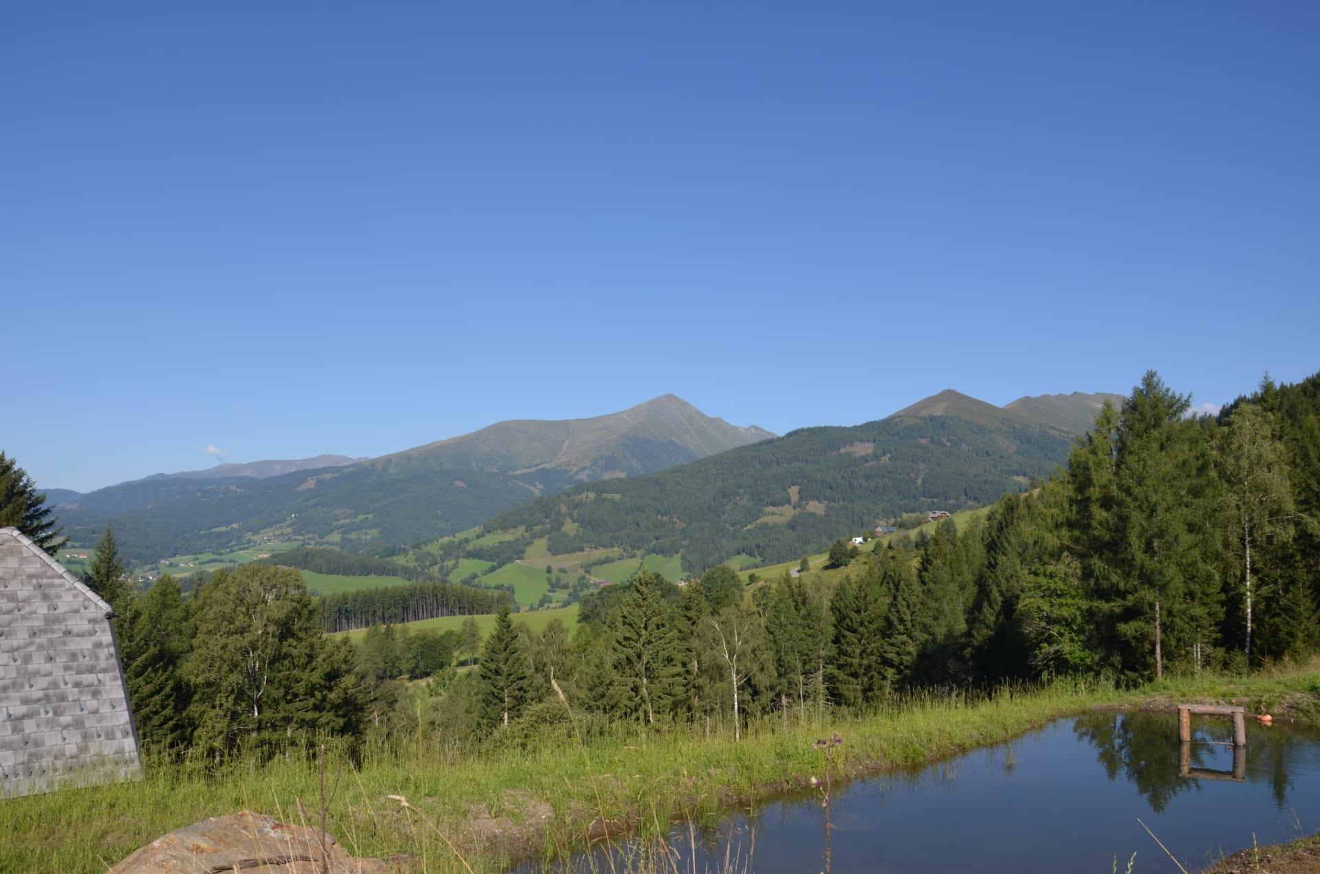 Der Fischteich mit Panoramablick