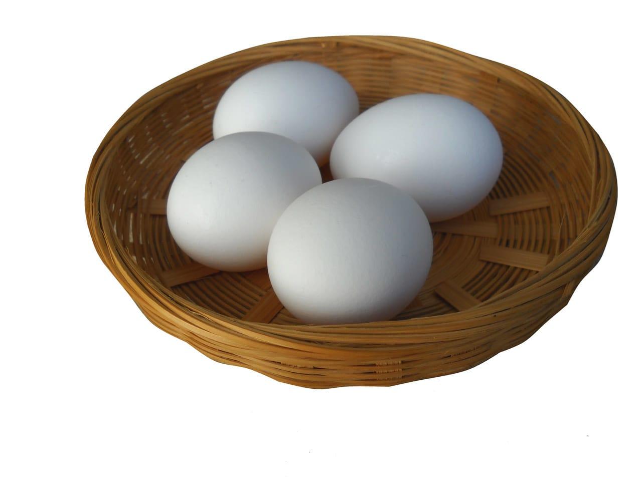 frische Eier von unseren glücklichen Hühnern