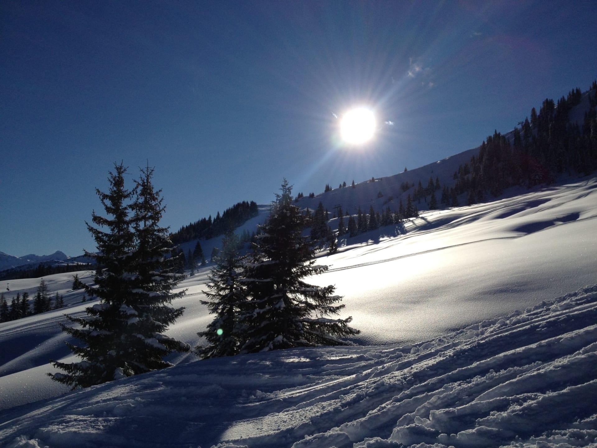 Skilaufen im Neuschnee