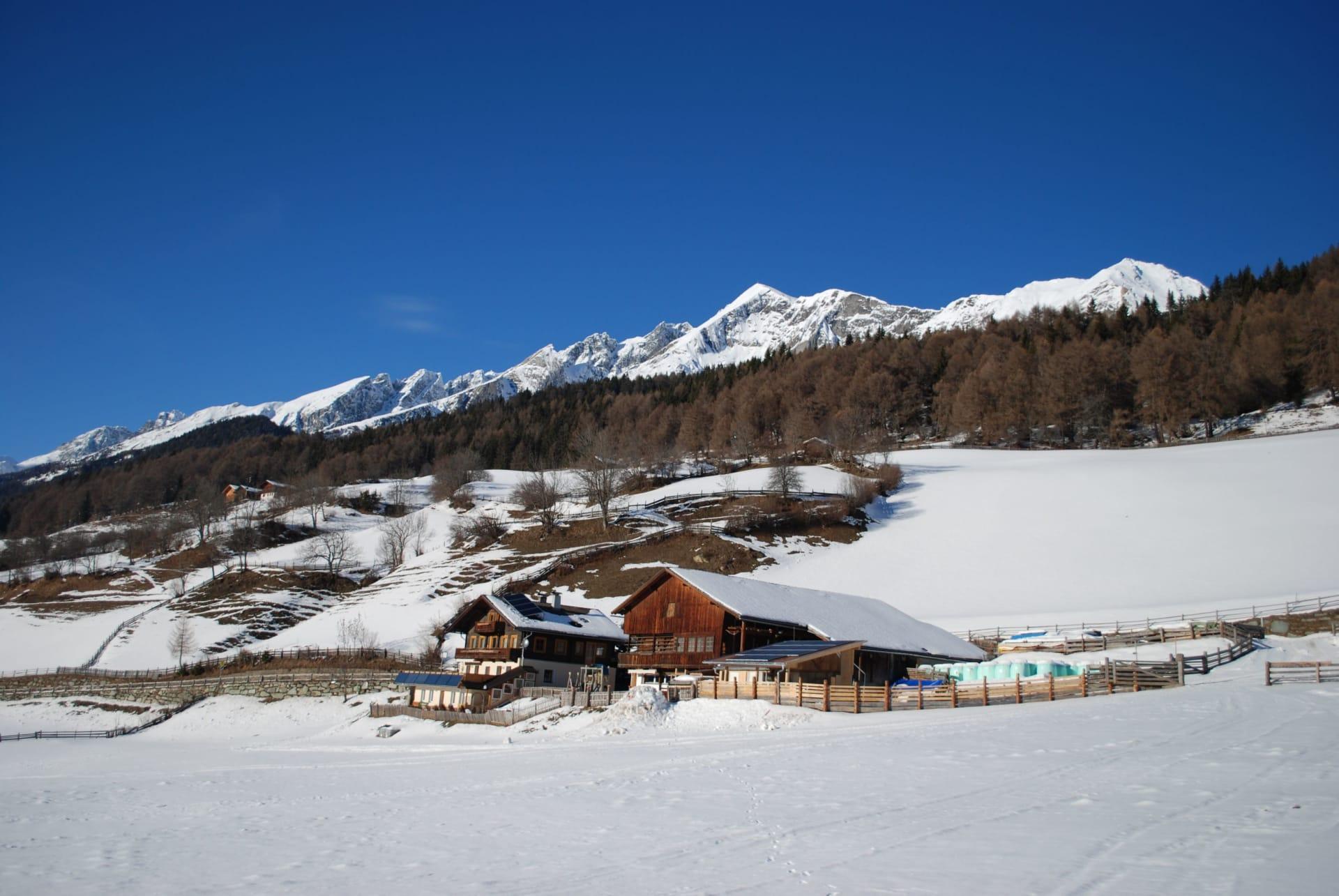Winter am Veidlerhof