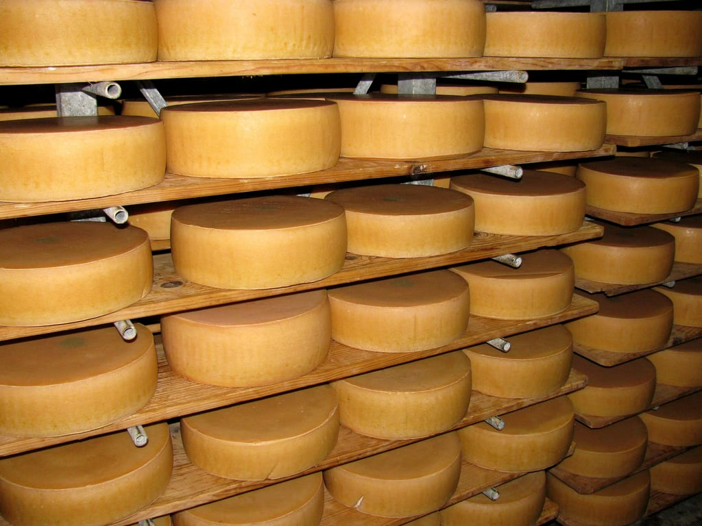 Käse von der Alpe