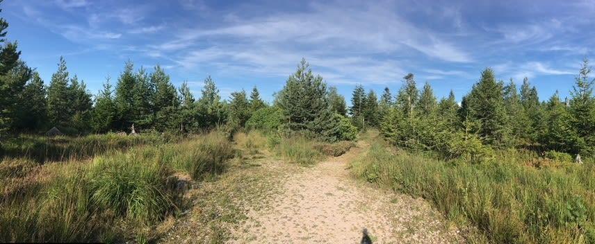 Adlerbad  Wanderwoche