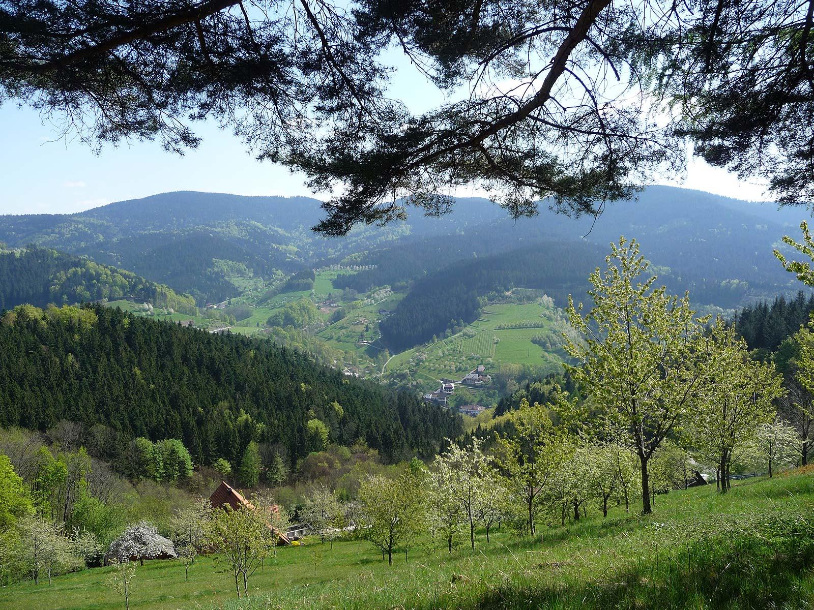 Adlerbad Nationalpark Tage