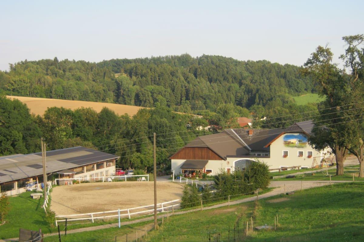 Singles aus Feldkirchen an der Donau kennenlernen