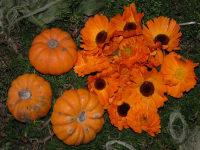 Kürbis und Ringelblumen
