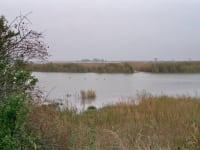 Landschaftbild