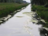 Einserkanal