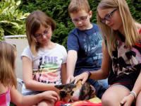 Gästekinder mit Kätzchen Magdi