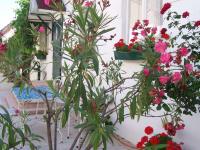Blumengeschmückter Hof.