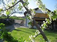 Blick zur Terrasse - Weinkeller