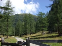Wanderweg zur Lärchenhütte