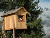 ein Highligt ist das neu errichtete Baumhaus- hier kann man auch übernachten
