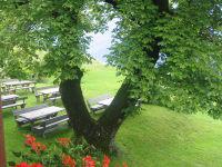 Unterm Walnussbaum