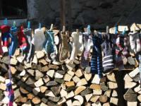 Wollsocken an der Leine
