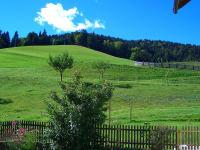 Blick vom Garten auf unsere sattgrünen Wiesen