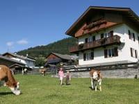 Ferienhaus mit Viehweide