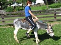 Sabine beim Eselreiten