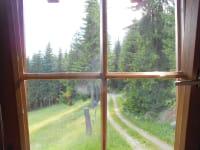 Anfahrtsweg Blick vom Zimmer